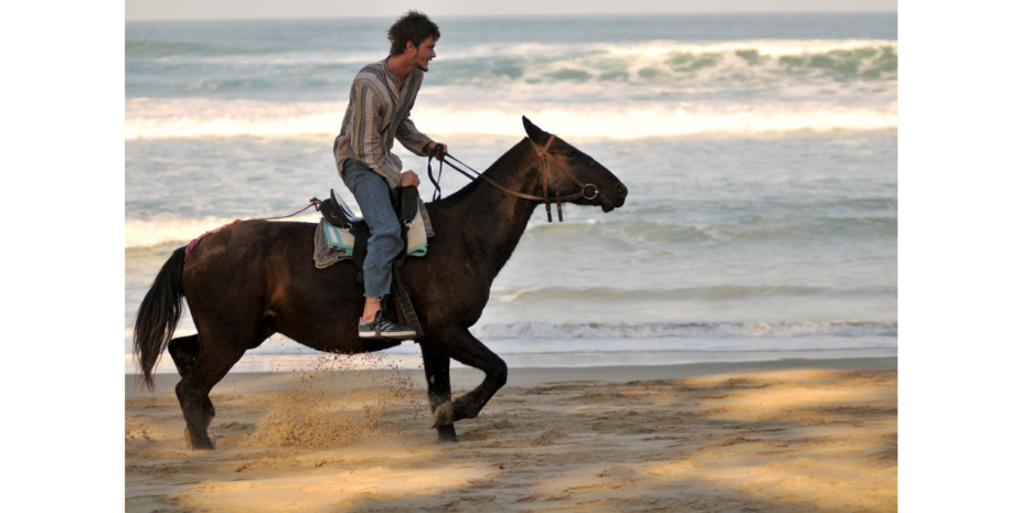 Guest galloping on beach