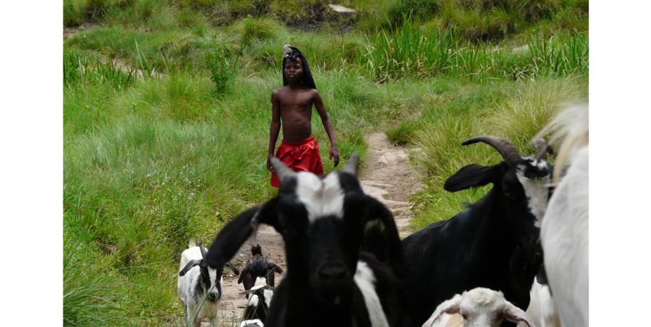 Pondo Boy with Goat